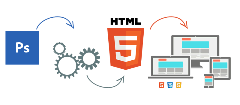 pds to html barranquilla